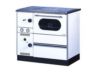 Alfa Plam šildymo krosnelė - viryklė Term 20 kaina ir informacija | Krosnelės | pigu.lt