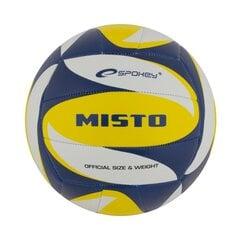 Tinklinio kamuolys Spokey Misto