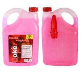 "BOKER vasarinis stiklų ploviklis ""Cherry"" 4L kaina ir informacija | BOKER vasarinis stiklų ploviklis ""Cherry"" 4L | pigu.lt"