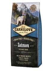 Carni Love Salmon for Adult 12kg kaina ir informacija | Carni Love Salmon for Adult 12kg | pigu.lt