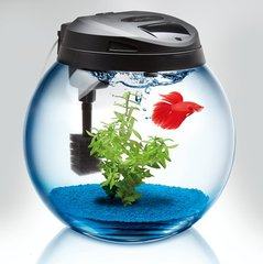 Akvariumas CLASSIC SPHERICAL TANK 45
