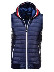 Vyriška liemenė Ombre V21 kaina ir informacija | Vyriškos striukės, paltai | pigu.lt