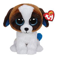 Pliušinis šuo TY Beanie Boos Duke, 37012 kaina ir informacija | Žaislai mergaitėms | pigu.lt