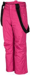 Slidinėjimo kelnės mergaitėms 4F kaina ir informacija | Žiemos drabužiai vaikams | pigu.lt