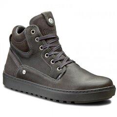 Vyriški batai Wrangler Historic kaina ir informacija | Vyriški batai | pigu.lt