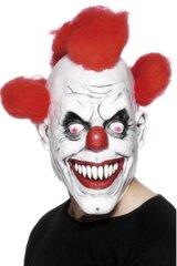 Blogo klouno kaukė su plaukais kaina ir informacija | Karnavaliniai kostiumai | pigu.lt
