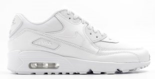 Женская спортивная обувь Nike Air Max 90 Mesh GS