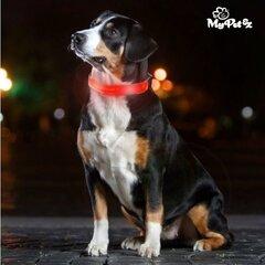 Antkaklis šunims su LED My Pet kaina ir informacija | Pavadėliai, antkakliai, petnešos katėms | pigu.lt