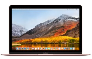 Apple MacBook 12 Retina (MNYL2RU/A) EN/RU