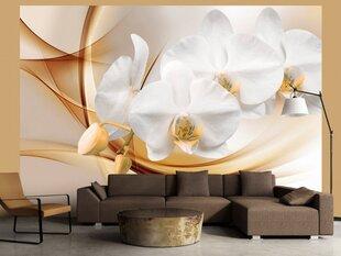 Fototapetai Orchidėjos žiedai