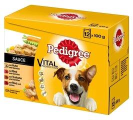 Pedigree konservų šunims rinkinys Vital Protection, 12x100 g kaina ir informacija | Pedigree konservų šunims rinkinys Vital Protection, 12x100 g | pigu.lt