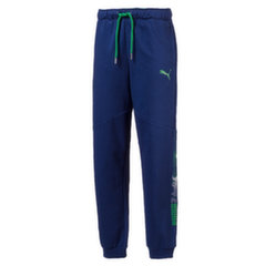 Puma sportinės kelnės Hero Pants FL, Blue Depths