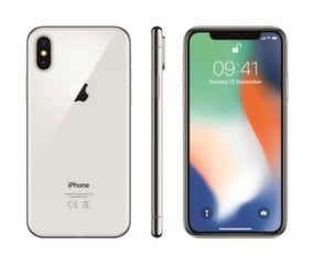 Apple iPhone X 256GB, Sidabrinė