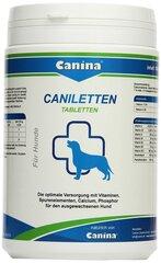 Canina tabletės Canilleten N500, 1000 g