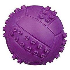 Trixie cypsintis kamuoliukas, 6 cm kaina ir informacija | Žaislai šunims | pigu.lt