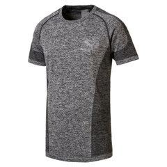 Vyriški marškinėliai Puma evoKNIT XXL kaina ir informacija | Vyriška sportinė apranga | pigu.lt