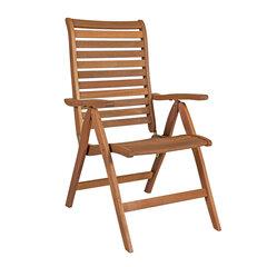 Kėdė Eureka, ruda kaina ir informacija | Lauko kėdės, foteliai, pufai | pigu.lt