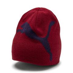 Vyriška kepurė Puma ESS Big Cat kaina ir informacija | Šalikai, kepurės, pirštinės | pigu.lt