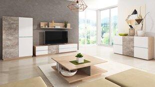 Svetainės baldų komplektas Inline, rudas/baltas/pilkas kaina ir informacija | Sekcijos | pigu.lt