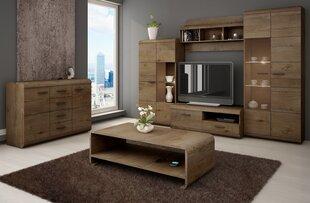 Svetainės baldų komplektas Lena, rudas kaina ir informacija | Sekcijos | pigu.lt