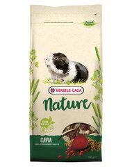 Versele Laga Cavia Nature полноценный корм для морских свинок, 9 кг цена и информация | Versele Laga Cavia Nature полноценный корм для морских свинок, 9 кг | pigu.lt