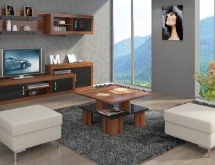 Kavos staliukas Supra, rudas/juodas kaina ir informacija | Kavos staliukai | pigu.lt