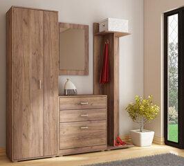 Prieškambario baldų komplektas VI, rudas kaina ir informacija | Prieškambario komplektai | pigu.lt