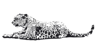 Vaikiškas interjero lipdukas Leopardas