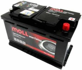 AGM akumuliatorius MOLL 81080 Start-Stop Plus 80Ah 800A