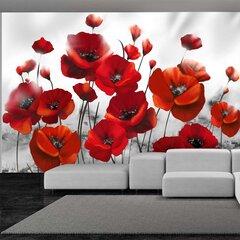 Fototapetas - Poppies in the Moonlight kaina ir informacija | Fototapetai | pigu.lt