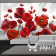 Fototapetas - Poppies in the Moonlight kaina ir informacija | Fototapetai | pigu.lt