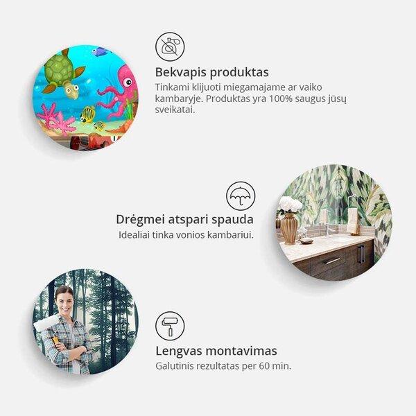 Fototapetas - World map on the wall internetu