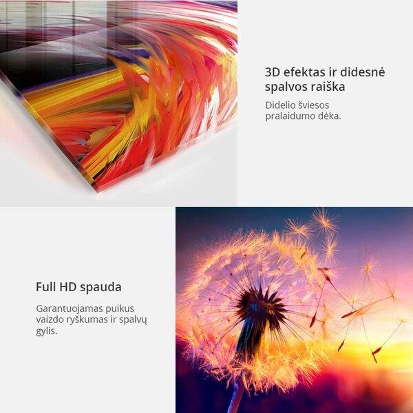 Akrilo stiklo paveikslas - Scarlet Field [Glass] internetu