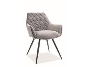 2-jų kėdžių komplektas Signal Meble Linea, pilkas kaina ir informacija | Virtuvės ir valgomojo kėdės | pigu.lt