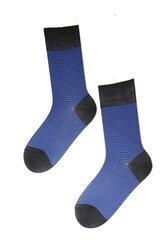 Vyriškos kojinės prie verslo kostiumo Cecar, spalva: mėlyna kaina ir informacija | Vyriškos kojinės | pigu.lt