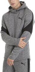 Vyriškas džemperis Puma Evostripe Hoody kaina ir informacija | Puma Vyriški drаbužiai | pigu.lt