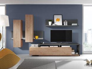 Sekcija NV50, ruda/pilka