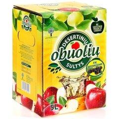 Obuolių sultys su aronijomis Ažuožeriai, 5 l kaina ir informacija | Sultys, nektarai ir sulčių gėrimai | pigu.lt