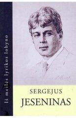 Sergejus Jeseninas (Iš meilės lyrikos lobyno) kaina ir informacija | Poezija | pigu.lt