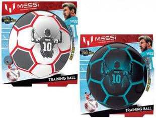 Treniruočių kamuolys Fair S2 kaina ir informacija | Futbolas | pigu.lt