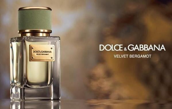 Kvapusis vanduo Dolce & Gabbana Velvet Bergamot EDP vyrams 50 ml internetu