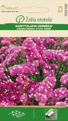 Karpytalapiai kermėkai kaina ir informacija | Gėlių sėklos | pigu.lt