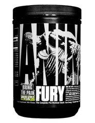 Maisto papildas Universal Nutrition Animal Fury 491 g. ,mėlynų aviečių skonio kaina ir informacija | Aminorūgštys | pigu.lt