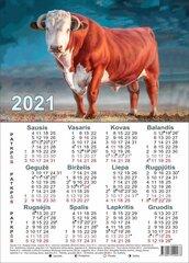 Kalendorius A4 formato kaina ir informacija | Kalendoriai, darbo knygos | pigu.lt