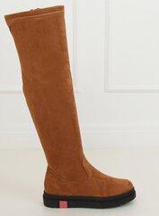 Ilgaauliai batai moterims, rudi kaina ir informacija | Aulinukai, ilgaauliai batai moterims | pigu.lt