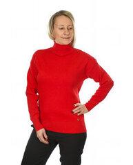 Džemperis moterims kaina ir informacija | Megztiniai moterims | pigu.lt