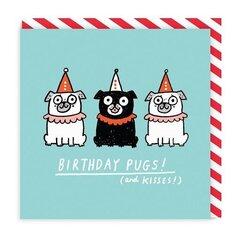 Atvirukas gimtadieniui - Birthday Pugs цена и информация | Конверты, открытки | pigu.lt