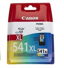 Canon 5226B004 (CL541XL) kaina ir informacija | Kasetės rašaliniams spausdintuvams | pigu.lt