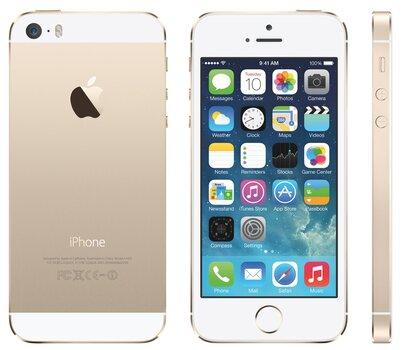 Apple iPhone 5s, Auksinė kaina ir informacija | Mobilieji telefonai | pigu.lt