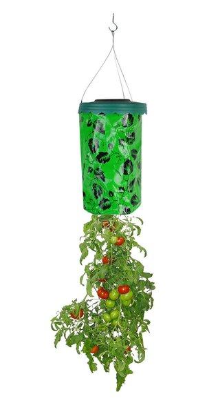 Vazonas daržovių auginimui